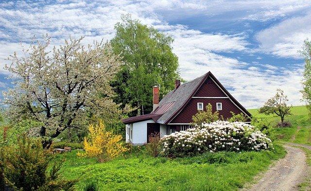 Tips om je tuin op te fleuren